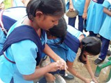 Students clean thir plate and hand using soap before and after Mid-day meal in school and in house as well
